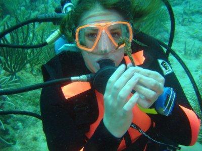 Clase introducción buceo en Paamul Riviera Maya 1h