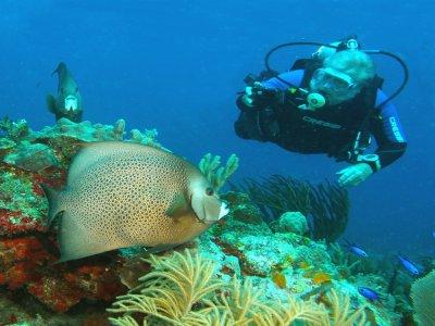 Curso Advanced Open Water Diver en Riviera Maya 4d