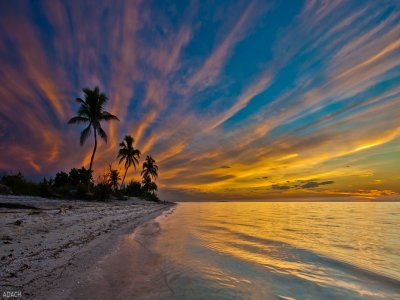 Guided tour to Cabo Catoche from Holbox for 5.5 h