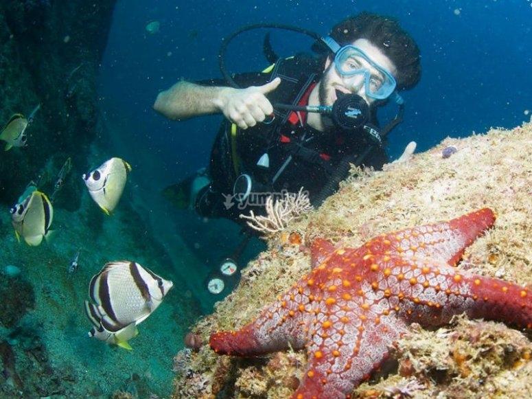 Ven a bucear con nosotros en la Bahía de Acapulco