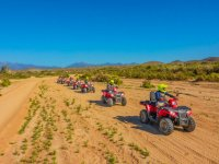 Explore the desert by BC on an ATV