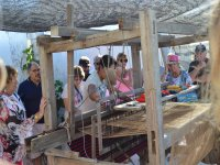 Cultural and historical tour of Todos Santos 6 hours