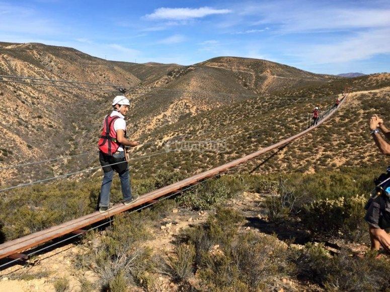Have fun on the suspension bridge