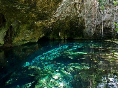 Snorkel in Cenote and swim with turtles Tulum 4h