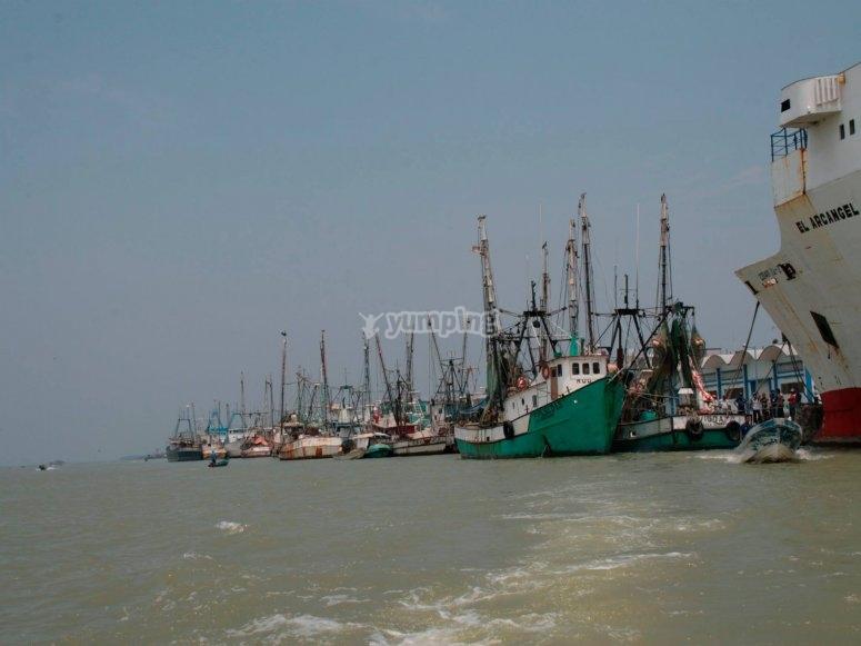 City of boats