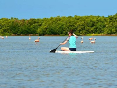 Stand Up Paddle Adventure in Chabihau 3.5 hours