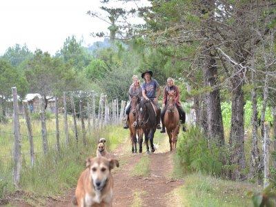 El Rancho Evergreen