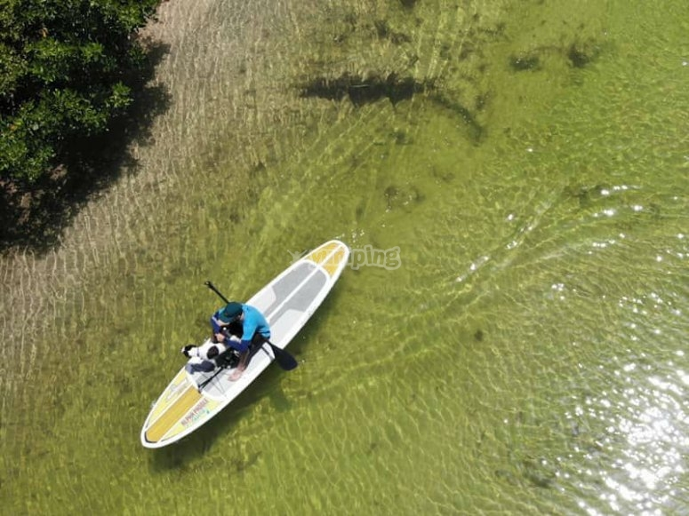 Crystal clear waters to enjoy the SUP