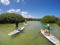 Stand Up Paddle Tour in San Crisanto 3.5 hours