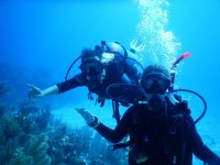 Cenotes tour for certified divers in Tulum 6hrs