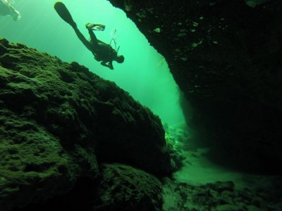 Diving for certificates in Cenote Dos Ojos Tulum