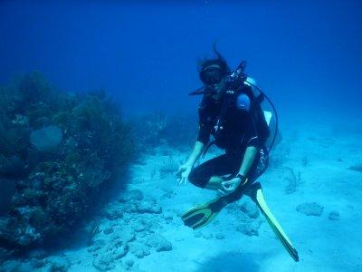 Buceo en aguas abiertas en Tulum 3 horas