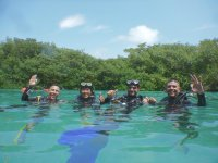 Introductory diving course in Tulum 3 hours
