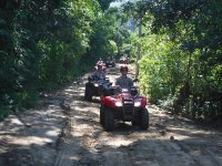 Drive your ATV surrounded by spectacular vegetation