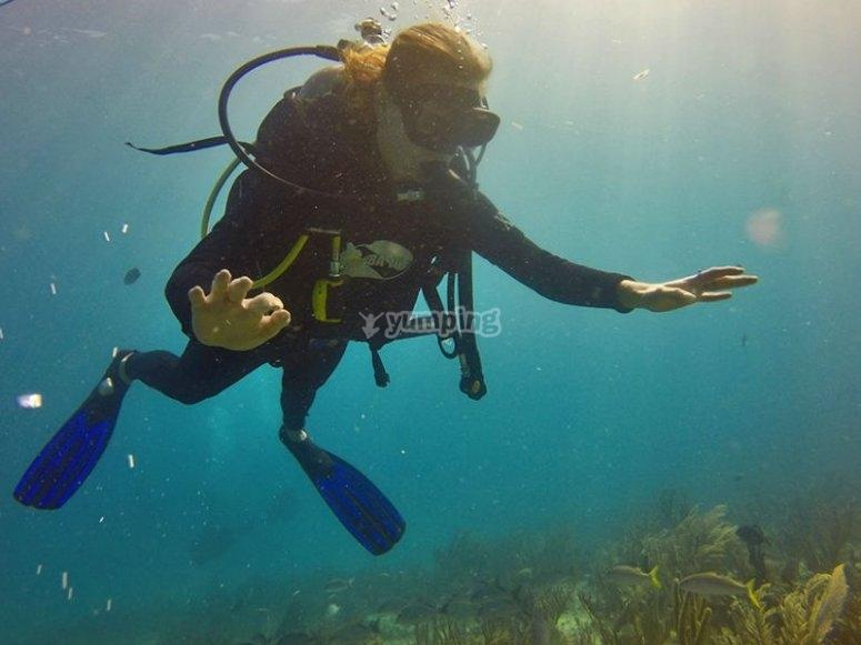 Haz tus primeras inmersiones en Playa del Carmen