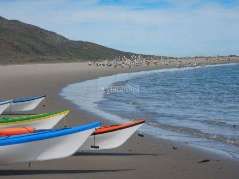 Wonderful landscapes in Coronado Island