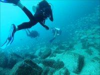 Diving for certified divers in Bahía de Banderas