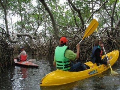 Eco Rutas Kayaks