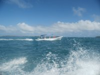 Discover the waters by boat