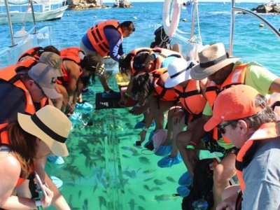 Paseo en barco de cristal por Los Cabos 4 horas