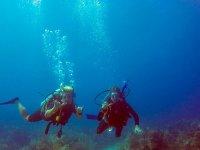 Clase de buceo Discover Scuba Diving en Akumal 4 h