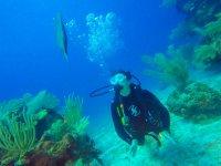 Sorpréndete cor un mundo nuevo bajo el agua