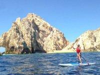 Paddle surf en Los Arcos con transporte Los Cabos
