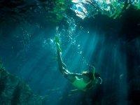 Snorkel en cenote Riviera Maya desde Akumal 2 hrs