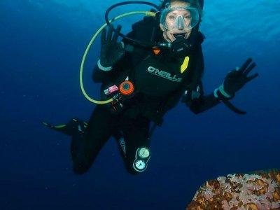 Aventura de Buceo con 2 inmersiones en Cozumel  5h