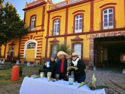 Tour haciendas pulqueras con almuerzo Edo. México