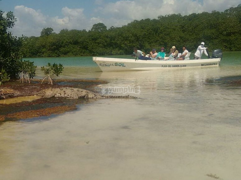 Boat ride through the Sian Ka'an lagoons