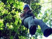 Canopy activity