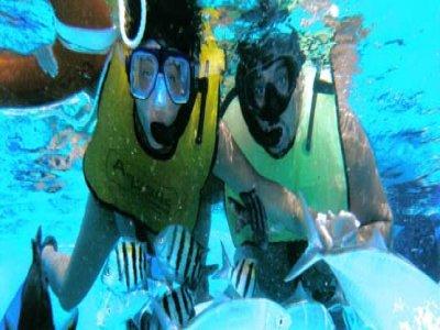 Ramón Zapata's Divers Snorkel