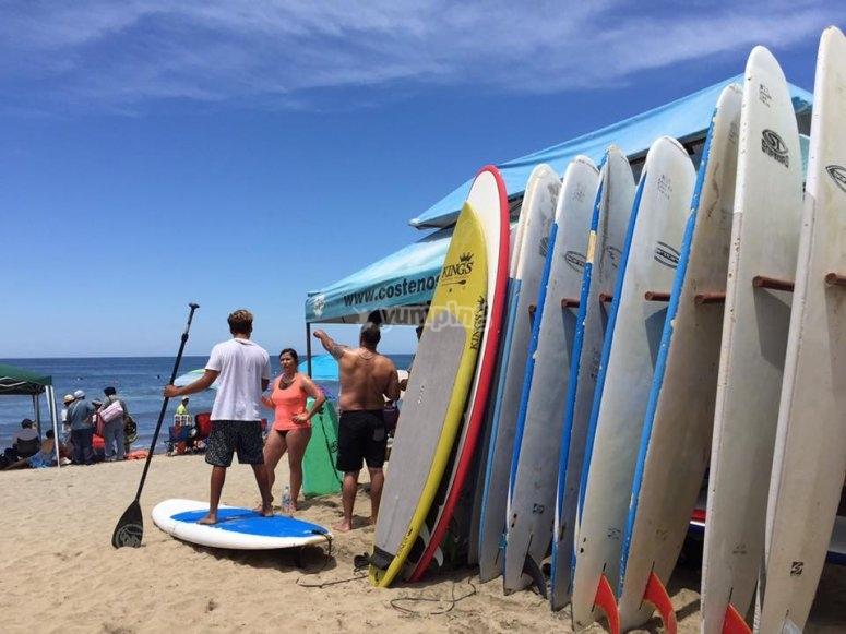 Renta de tabla de surf
