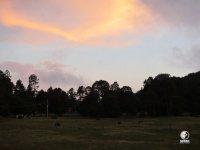 Sunrise in Durango