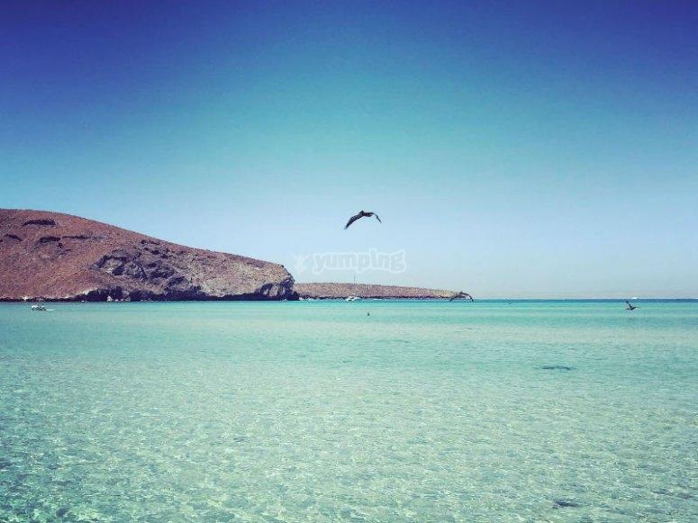 Balandra, una de las más hermosas playas de BC