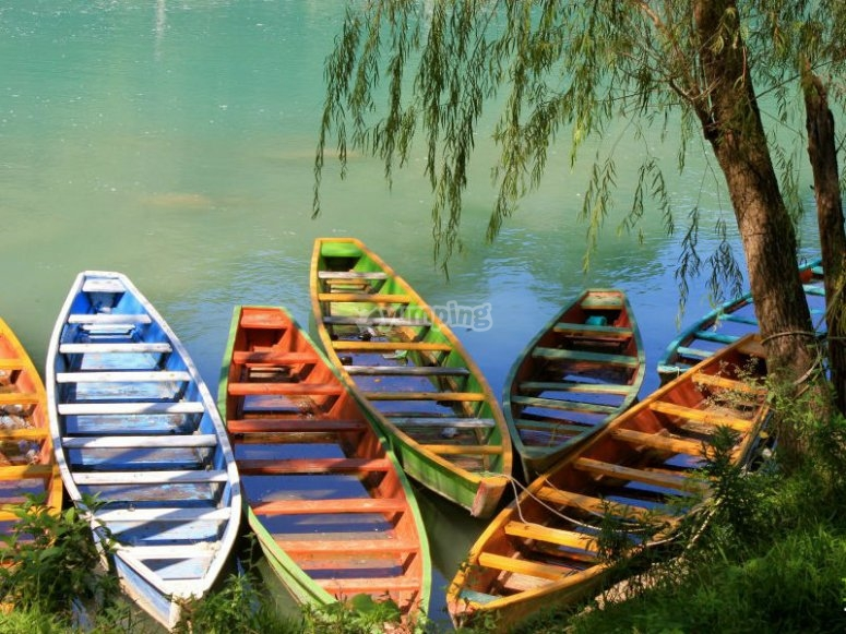 Beautiful canoes