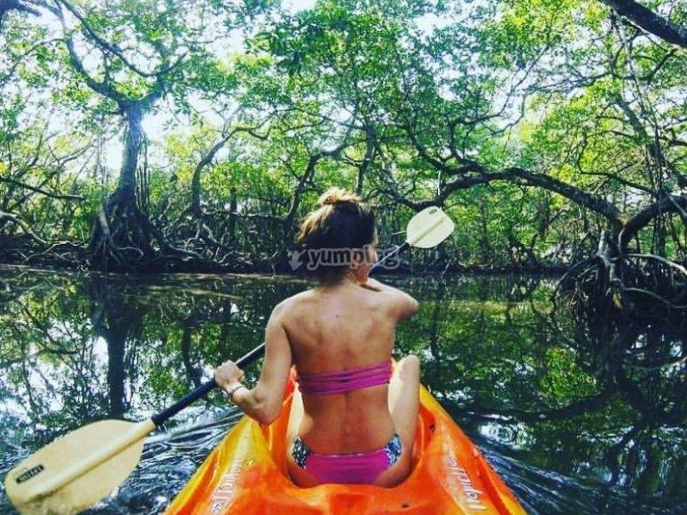 Recorrido de kayak por los manglares