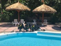 Pool sessions during the courses of diving