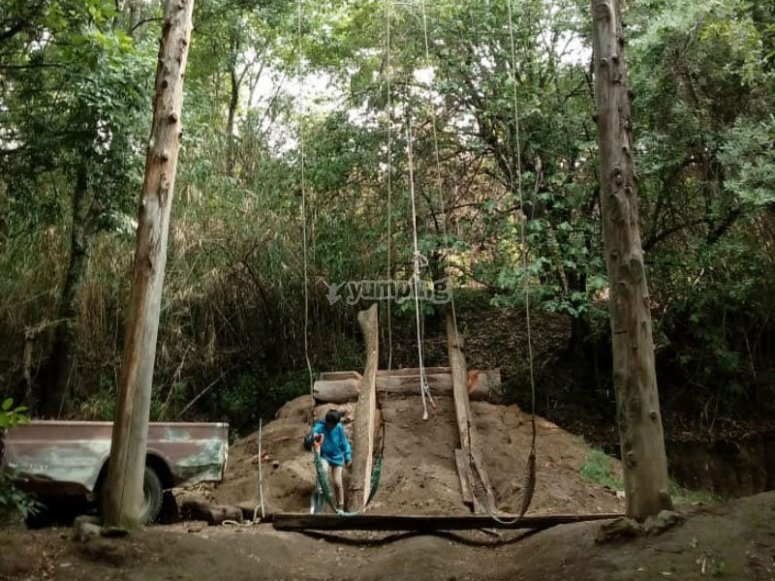 Swings up to 10 meters high