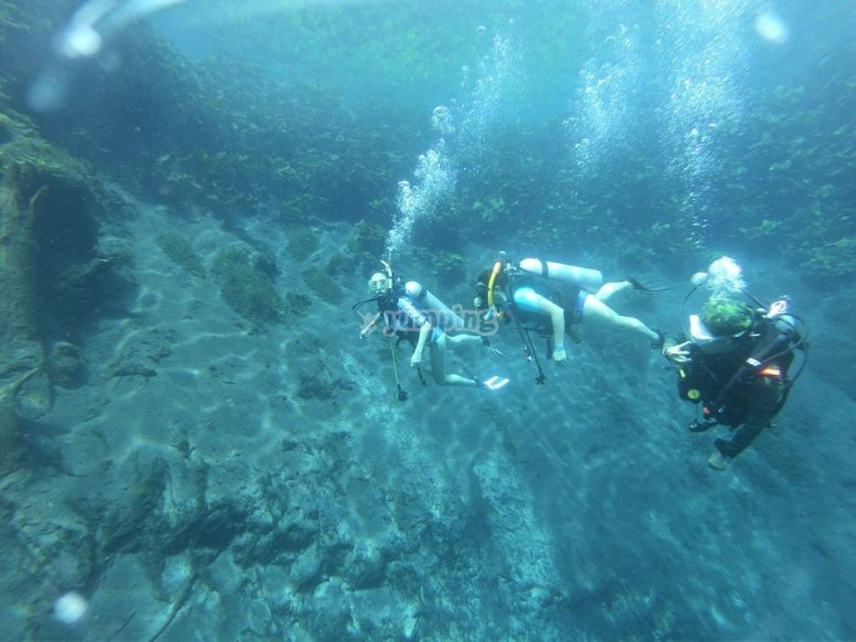 Knowing a new world under water