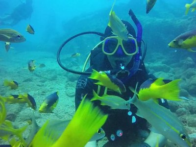2 diving dives in Cozumel 4 hours