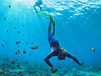 Tour de snorkel en Zihuatanejo 3 horas