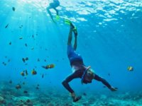 Snorkeling tour in Zihuatanejo 3 hours
