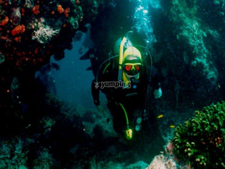 Unique diving experiences