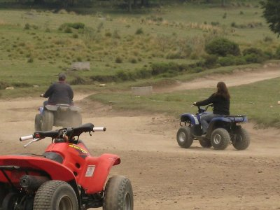 Rental of children's ATVs in La Marquesa 15 min