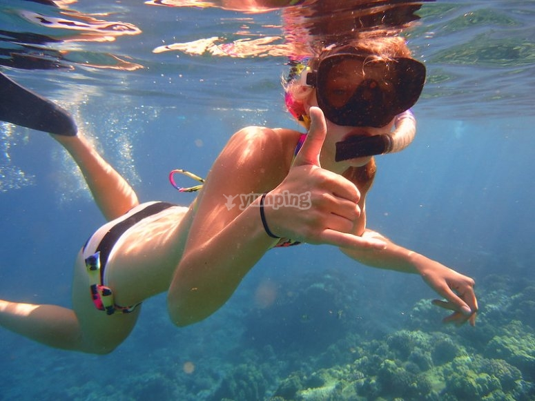 Discover the bottom of the La Paz sea with your snorkel