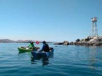 Tour Kayak y Snorkel por Bahía de La Paz 5.5 hrs
