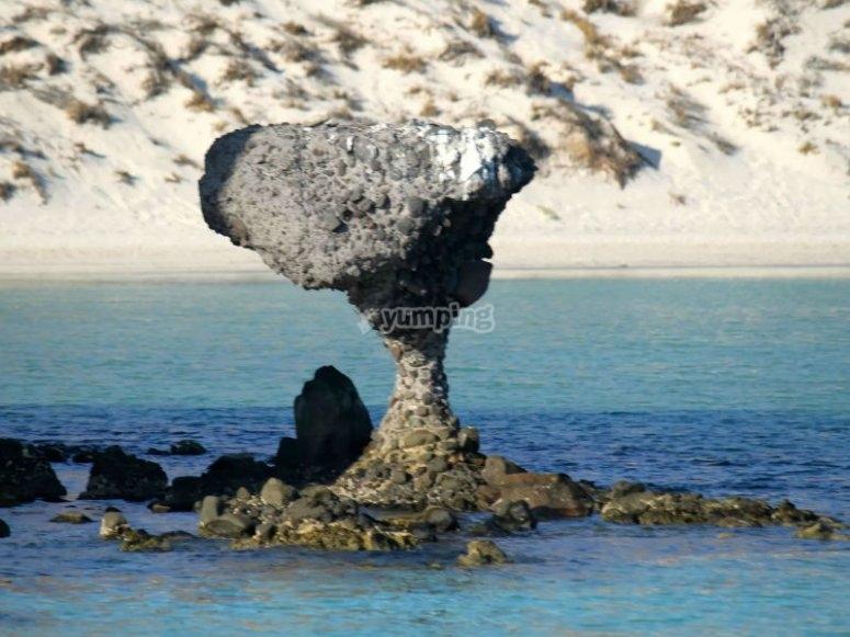La piedra del hongo en Playa Balandra