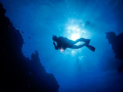 5 dive immersions with accommodation Cozumel 8 d